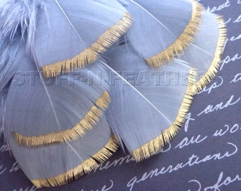 GOLD DIPPED silver gray feathers - metallic gold hand painted individual turkey feathers / 3-5 in (7.5-12.5 cm) long, 6 pieces / F112-3G