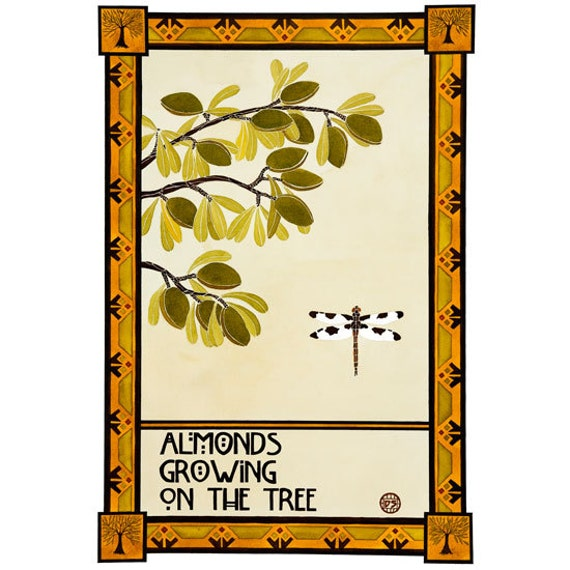 Art Print Arts And Crafts Mission Style Almonds Growing On