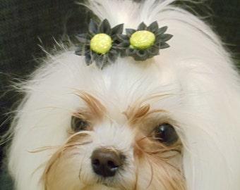 Reusable Black Sunflower Dog Bows