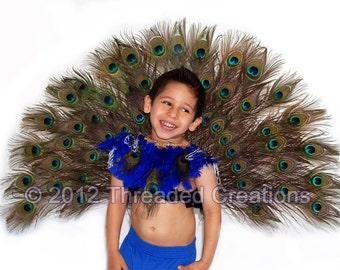 Peacock Spray - Peacock Tail - Peacock Costume - Peacock Wings - Carnival Costume - Boy Carnival Costume