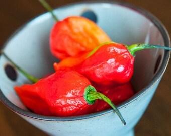 Organic Heirloom 20 Ghost Chili Chilli Seeds Chile Pepper Seeds Bhut Jolokia Vegetable Garden Seeds F47