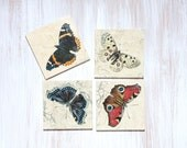 Butterfly Coasters, Set of 4 Coasters, Gift for Him, Kitchen Decor, Gift for Hostess