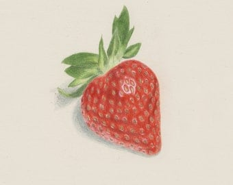 Strawberry Drawing print