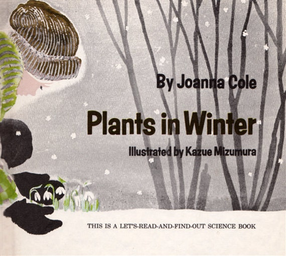 Plants in Winter by Joanna Cole, illustrated by Kazue Mizumura