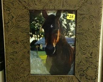 Pretty Posing Horse