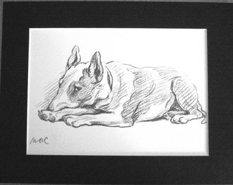 Vintage Signed  Mounted 1937 'Mac' Lucy Dawson Red bull terrier dog plate/print  gift