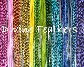 """FREE shipping 11 Grizzly Feathers Vivid Colorful Whiting GRIZZLY Feathers kit 8""""-12"""" Beads Threader Divine Feathers Hot Pink Aqua"""