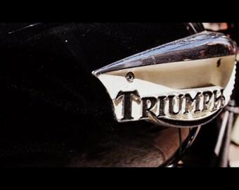 Vintage Triumph Motorcycle Tank Print 11x14 Artistryi Photography
