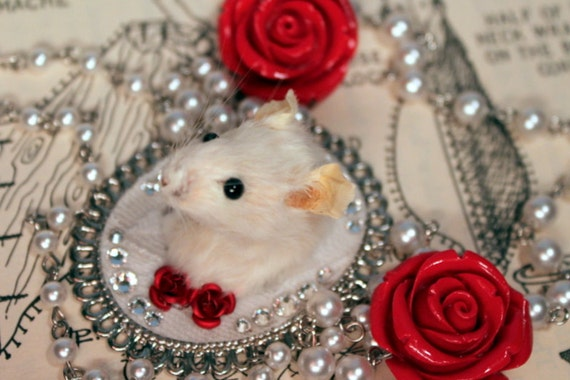 Taxidermy Mouse Necklace with Red Roses