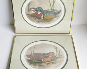 Original Dianne Krumel Vintage Duck Etchings.