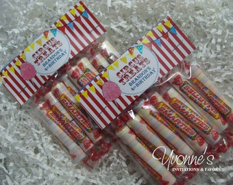 Circus Carnival Birthday Party Goody Treat Bags - for Child Birthday, First Birthday