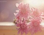 Floral Canvas Gallery Wrap Spring Decor Purple Pink Flowers Wall Art Girls Bedroom Nursery Romantic Photo Print Feminine Decor