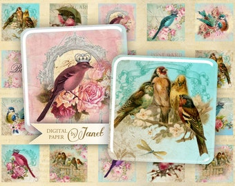 Bird Kingdom - squares image - digital collage sheet - 1 x 1 inch - Printable Download