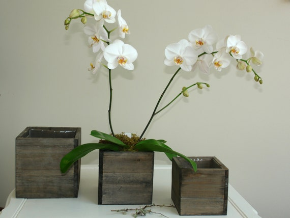 Items Similar To Wood Box Woodland Planter Flower Box