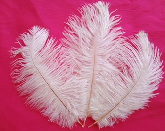 White Angel Ostrich Drab Feathers Wholeasale Bulk Lot Costume Craft Design Supply Hair Hat