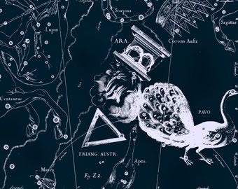 Constellation, Astrology, Zodiac map, 116