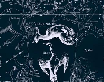 Constellation map, Zodiac, Antique prints, 122