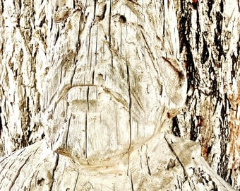 Carved Wooden Man Abstract Graphic Art Photograph Wall Art for Men