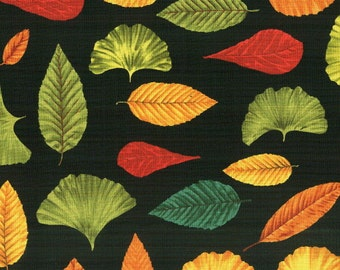 AUTUMN SONG  6409 by Blank Quilting