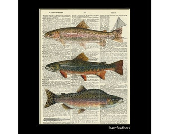 Vintage Dictionary Art Print - Fish Trout Salmon - Dictionary Page - Book Art Print No. P41