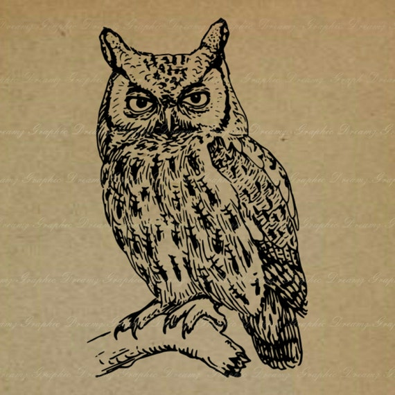 Owl with Big Eyes - No.44KM - Digital Image, Printable Clipart, Iron on Transfer for Fabric Pillows, Towels, Scrapbooking Craft