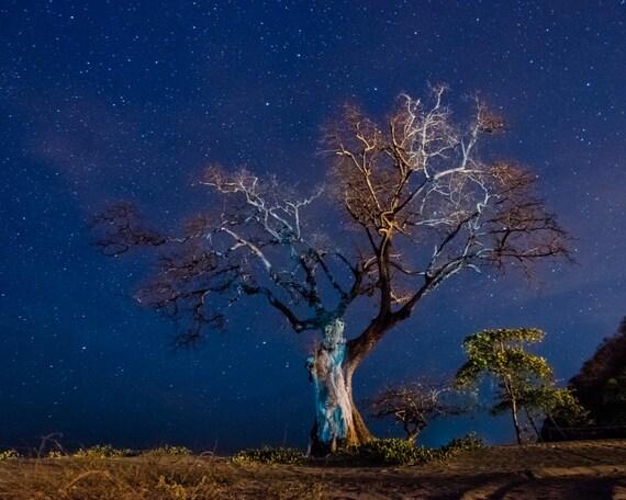 Starry Night - Costa Rica