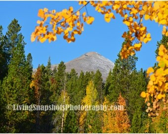 Photography Print of Breckenridge, CO, fall colors, aspens, landscape photo, 8x10, unframed, unmatted