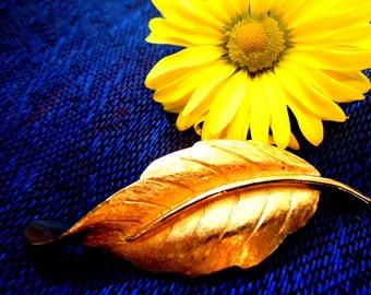 Avon Gold Tone Leaf Brooch