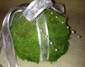 Hanging moss ball...
