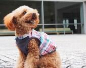 Kawaii Balloon blouse Dog Clothes PDF Pattern and Recipe