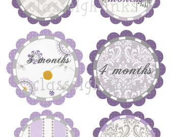 Grey and Purple Monthly Stickers Elegant Girly Baby Monthly Stickers
