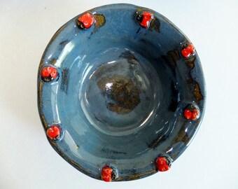 Blue Ceramic Ladybug Bowl