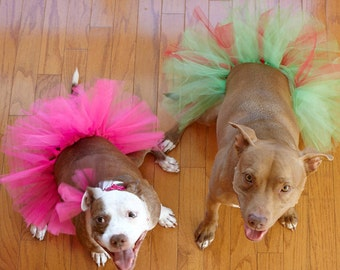 Large Dog Tutu - Hot Pink, Purple or Red and Green