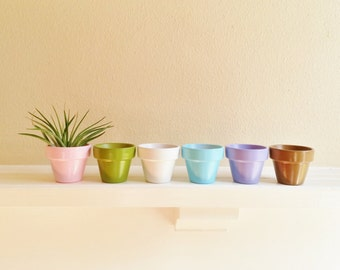 Pastel Mini Planters set of 6, housewarming gift, air plant containers, herb garden pots