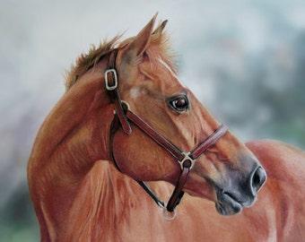 fine art horse print from original pastel painting, chestnut horse giclee horse print equine home decor quarter horse