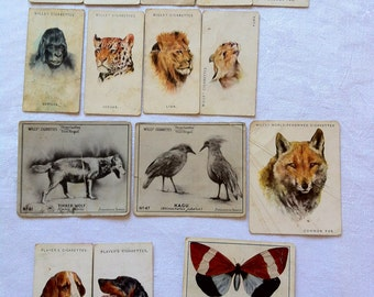 1930s Animal Cigarette Trading cards