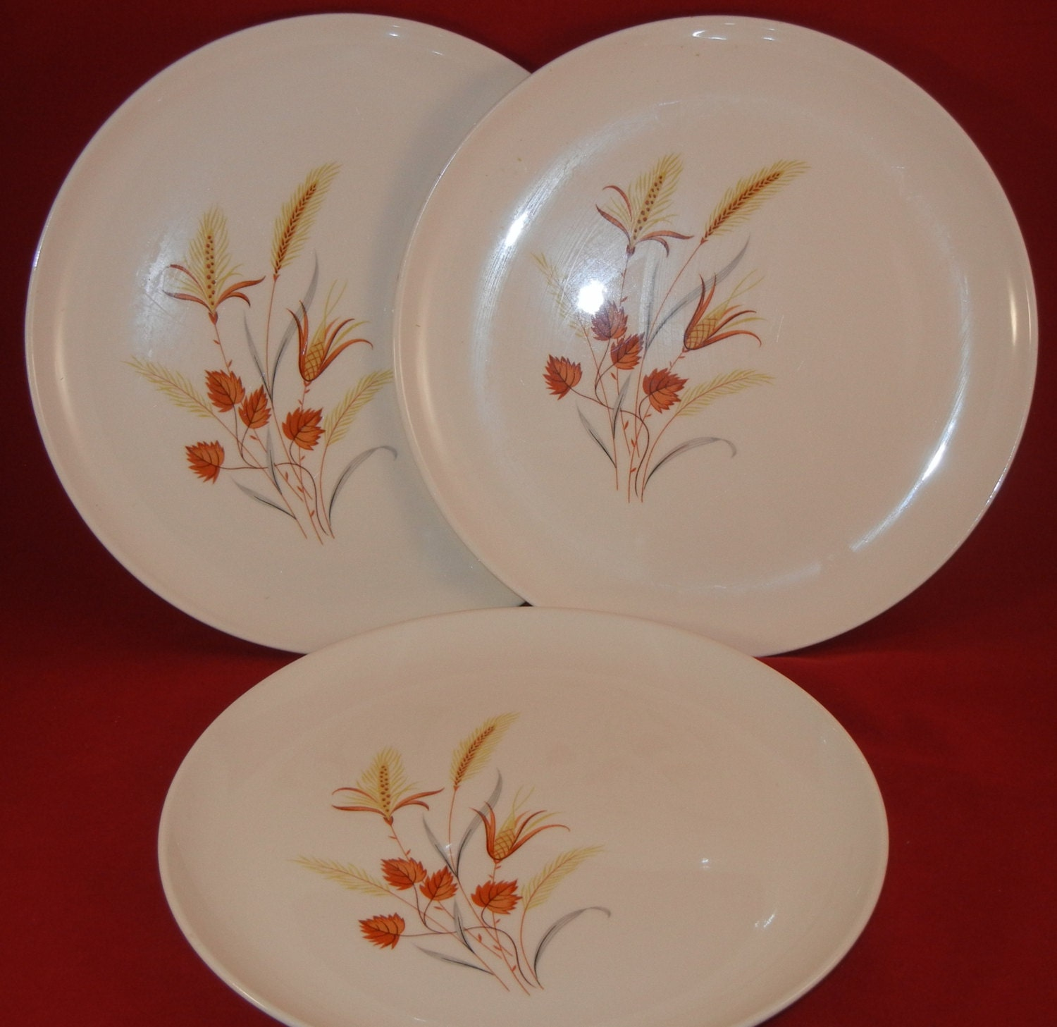 Harvest Dinnerware - Castrophotos