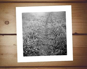 summertime . 20x20 cm giclee fine art print