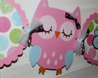"Pink and Blue Owl Highchair Banner ""I am 1"""