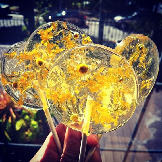3 Sparkling Orange And Chamomile Tea Lollipops With Orange Zest And Chamomile Flowers