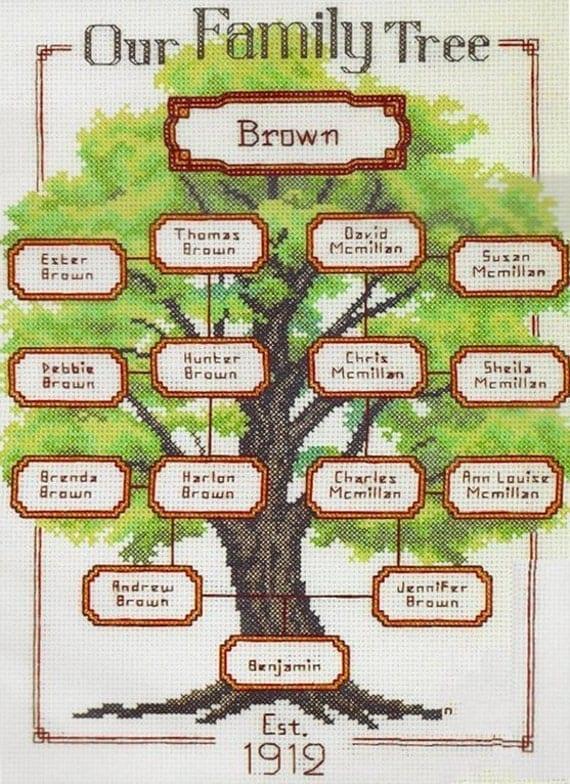 Arbol genealogico familiar en ingl s y espa ol imagui for Nombres de arboles en ingles