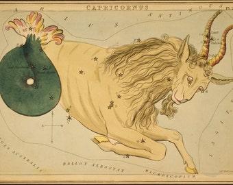 Constellation of Capricorn Vintage Print