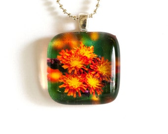 Orange Hawkweed Flower  Photo Pendant Necklace - Photo Necklace - Photo Jewelry - Flower Pendant - 24 Inch Silver Plated Ball Chain Incl