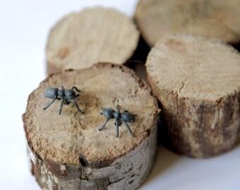 Ants earing in oxidised sterling silver