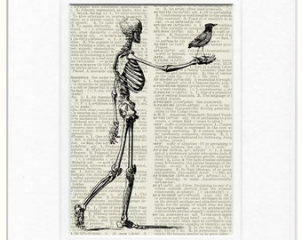 Skeleton print with bird print