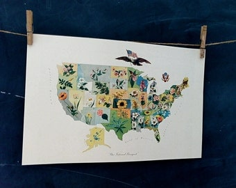 vintage map -United States Flower Map - circa 1911- flowers of the states
