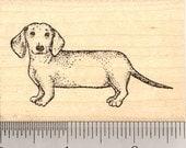 Dachshund Rubber Stamp, Wiener Dog J5014 Wood Mounted