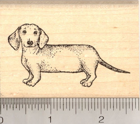 Dachshund Rubber Stamp, Wiener Dog J5014 Wood Mounted