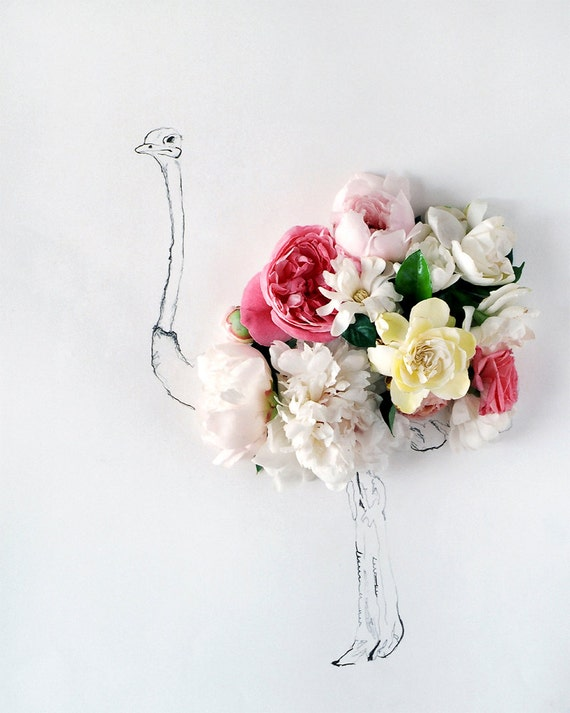 ostrich and Flower Photograph No. 88243