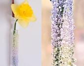 Glass Hanging Vase - Spring Mix